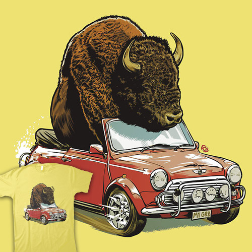 Bison in a Mini