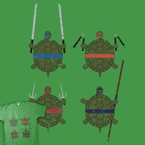 Undefined Age Martial Artist Tortoises