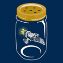 Catch A Firefly
