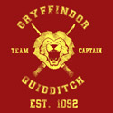Gryffindor Team Captain
