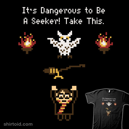 A Seeker's Quest