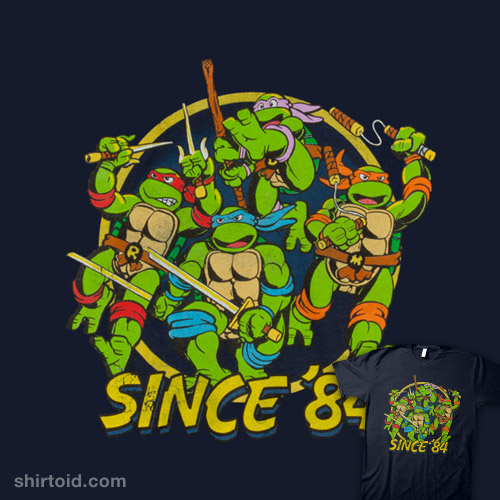 Ninja Turtles Attack