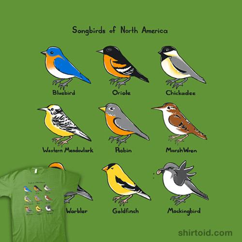 Songbirds of North America
