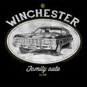 Winchester Auto