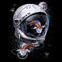 Space Koi