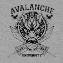 Avalanche University