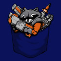 Pocket Battle Raccoon