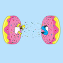 Donut Portal