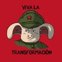 Viva la transformaćion