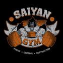 Saiyan Gym 2.0