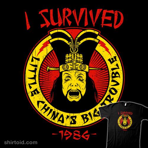 Surviving Trouble