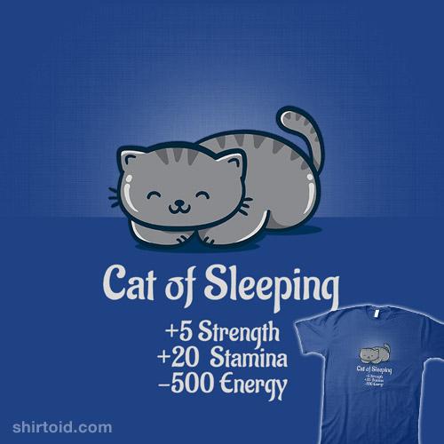 Cat of Sleeping