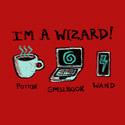 Modern Day Wizard