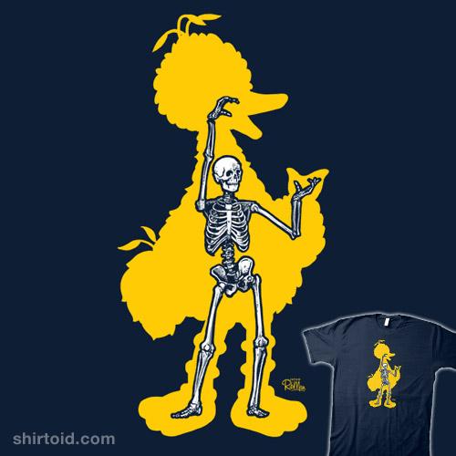 Big Bird X-Ray