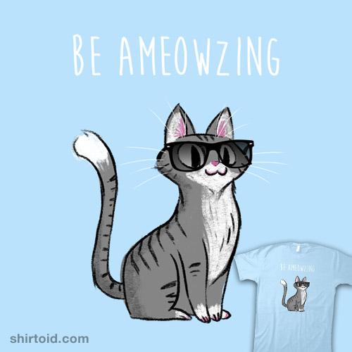 Be Ameowzing!