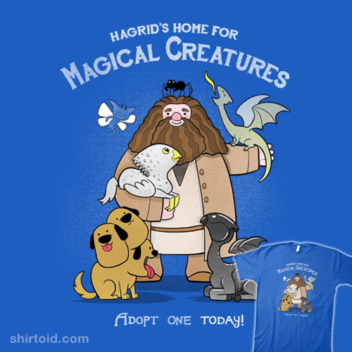 Home for Magical Creatures
