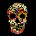 Floral Skull Vintage