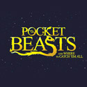 Pocket Beasts