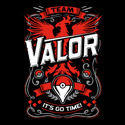 It's Go Time - Team Valor