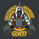 Techno Horse Gym