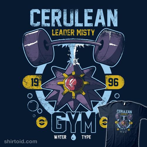 Cerulean Gym