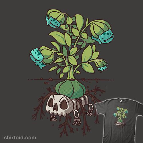 Bulba Plant