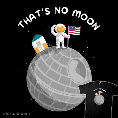 No Moon Landing