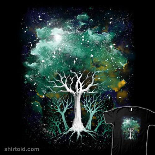Forest Nova
