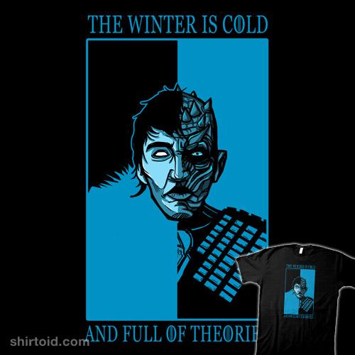 Winter Theories