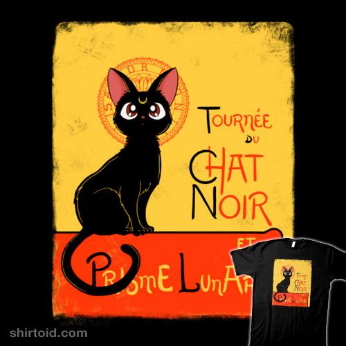 Chat noir et prisme lunare