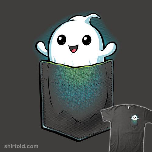 Pocket Ghost