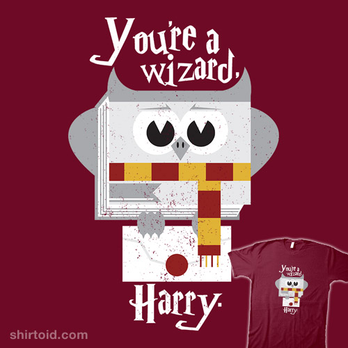 You're a Wizard
