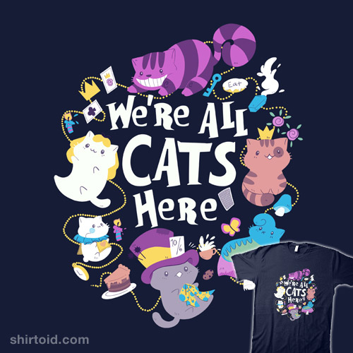 We're All Cats Here