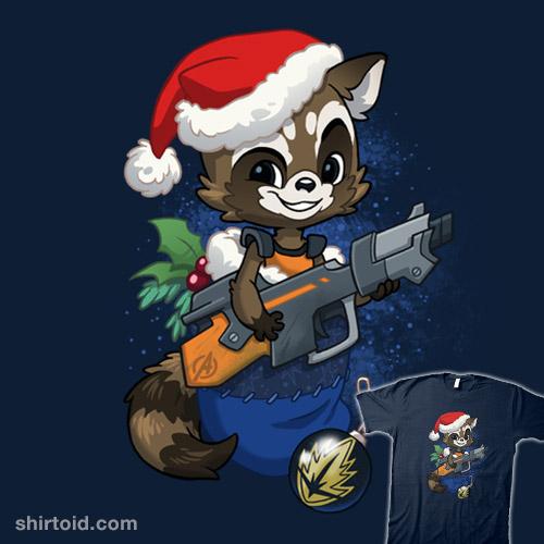 Stocking Stuffer: Raccoon