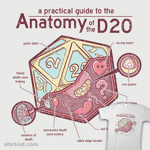 Anatomy of the d20