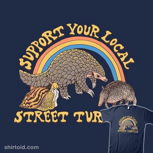 Street Turtles