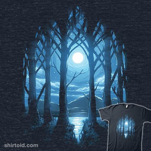 Vaulted Moonlight