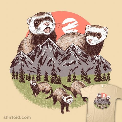 Mountain Ferrets
