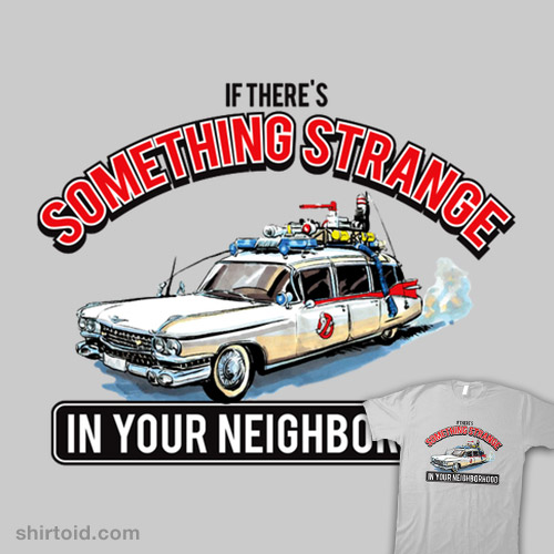 If There's Something Strange In Your Neighborhood