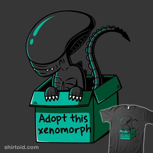 Adopt This Morph