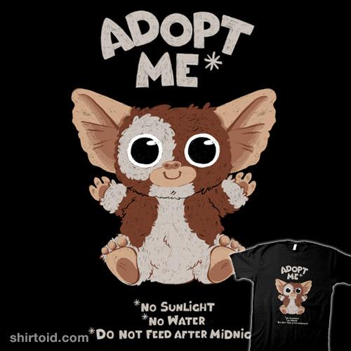 Adopt me*