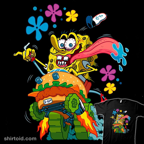 Sponge Fink