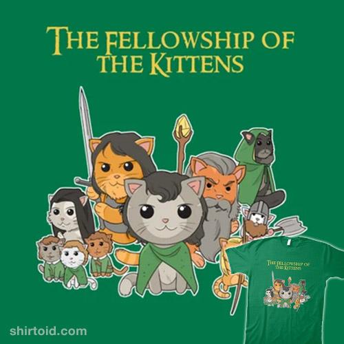Fellowship of the Kittens