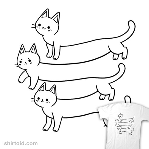 Illusion of Cats