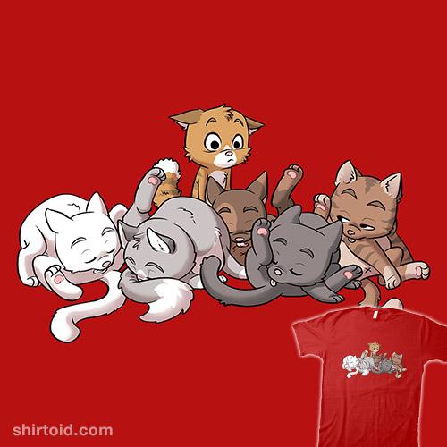 Awkward Cats