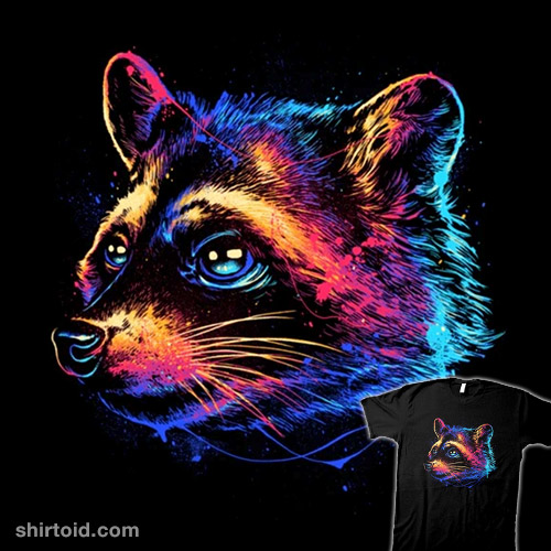 Colorful Raccoon