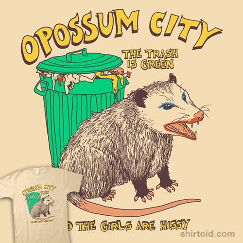 Opossum City