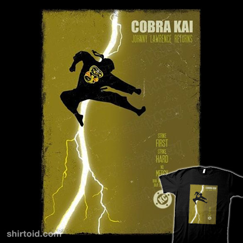 Cobra Kai Returns
