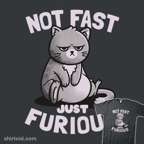 Not Fast Just Furious