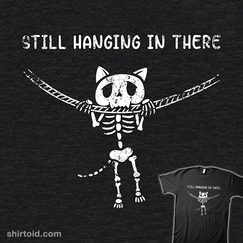 Still Hanging in There